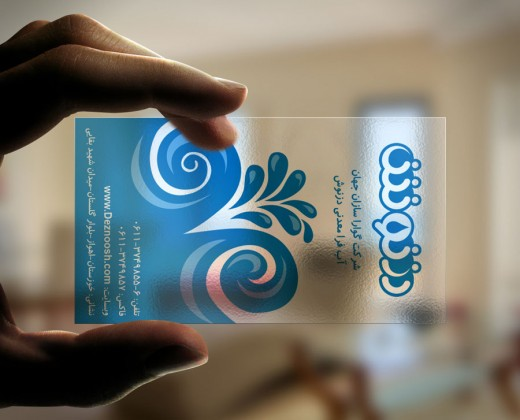 Deznoosh Transparent Business Card