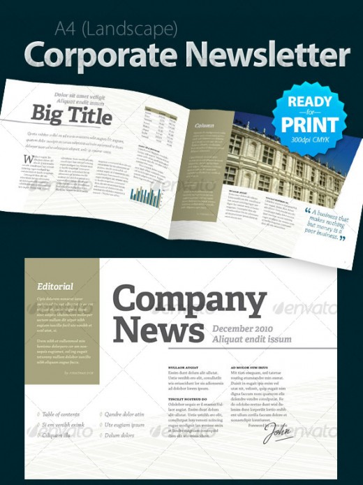 Best Corporate Newsletter Template Pictures  Best Resume Examples